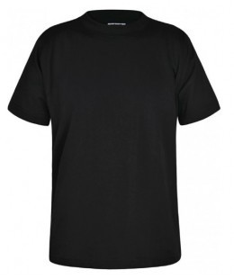 100% Cotton T-Shirts